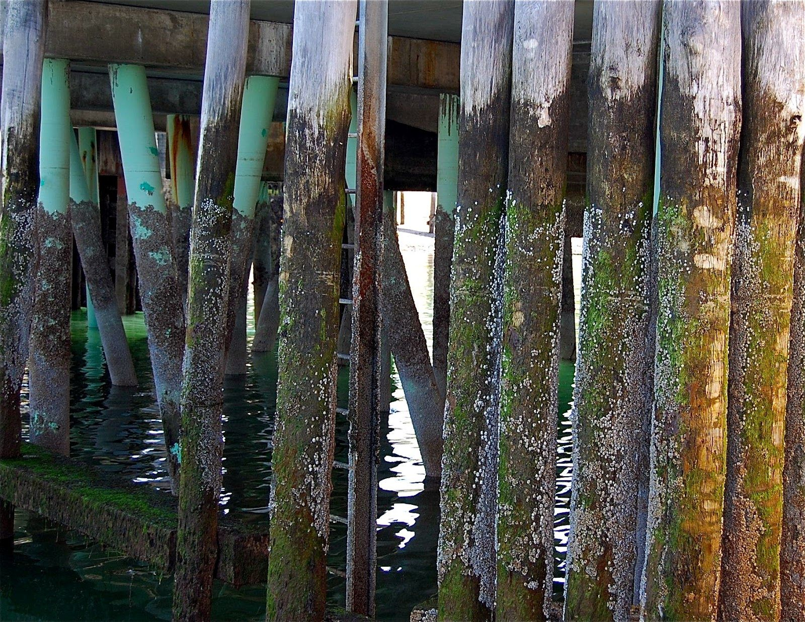 pilings ombre