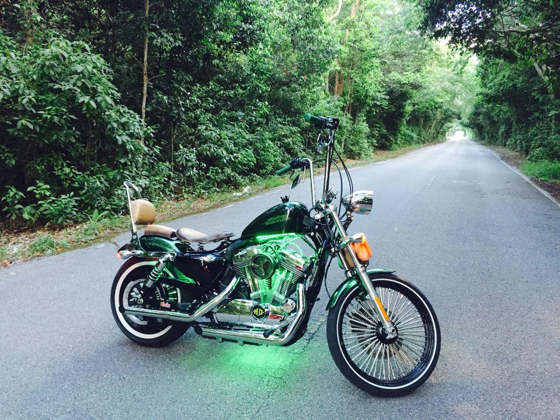 Sportster 72 | Sportster 72 bobber Harley Davidson ...