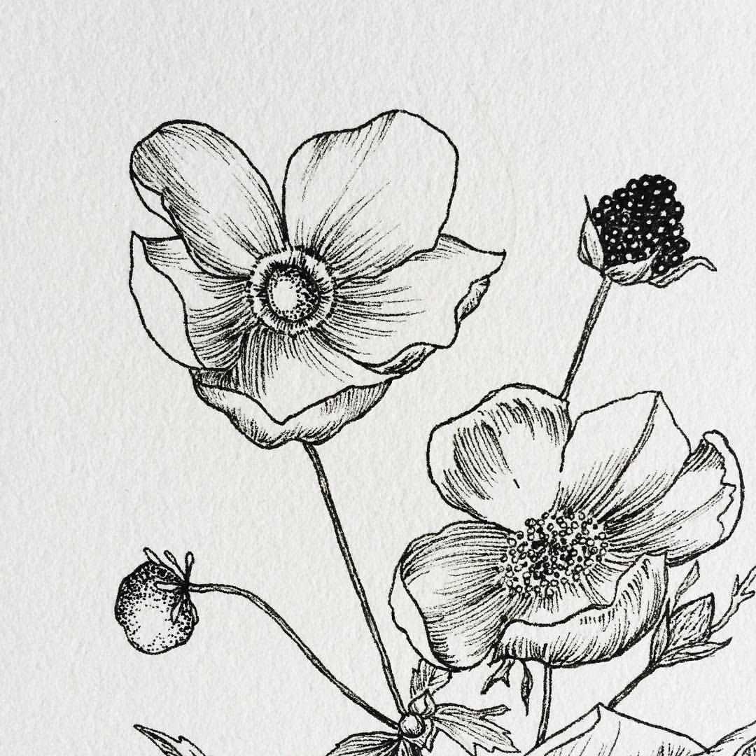 Pin de Zharick Fernández en Dibujos | Pinterest | Dibujo