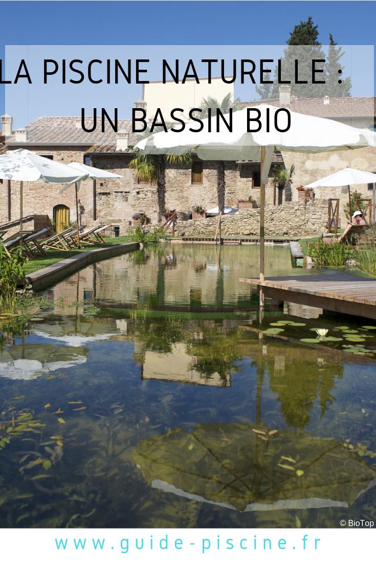 Bassin De Baignade Autoconstruction piscine naturelle : un bassin bio dans votre jardin