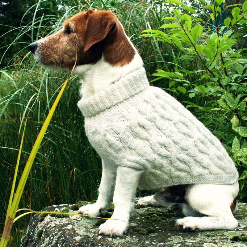 Hundepullover Stricken Mit Langem Halsteil Zukünftige Projekte