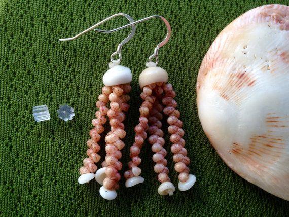 Sea Shell Earrings Kahelelani Shells Rare by KauaiShellsandMore