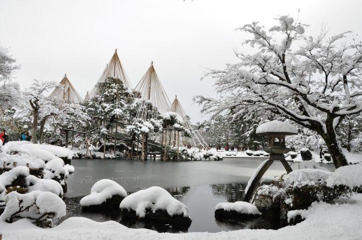 PRÉSERVER. Yukitsuri est une technique japonaise pour la préservation des arbres et arbustes de fortes chutes de neige. Les arbres bénéficient d'un soutien supplémentaire par des poteaux de bambou avec des cordes attachées aux membres. C'est une pratique qui remonte à l'époque d'Edo (1603 à 1868).