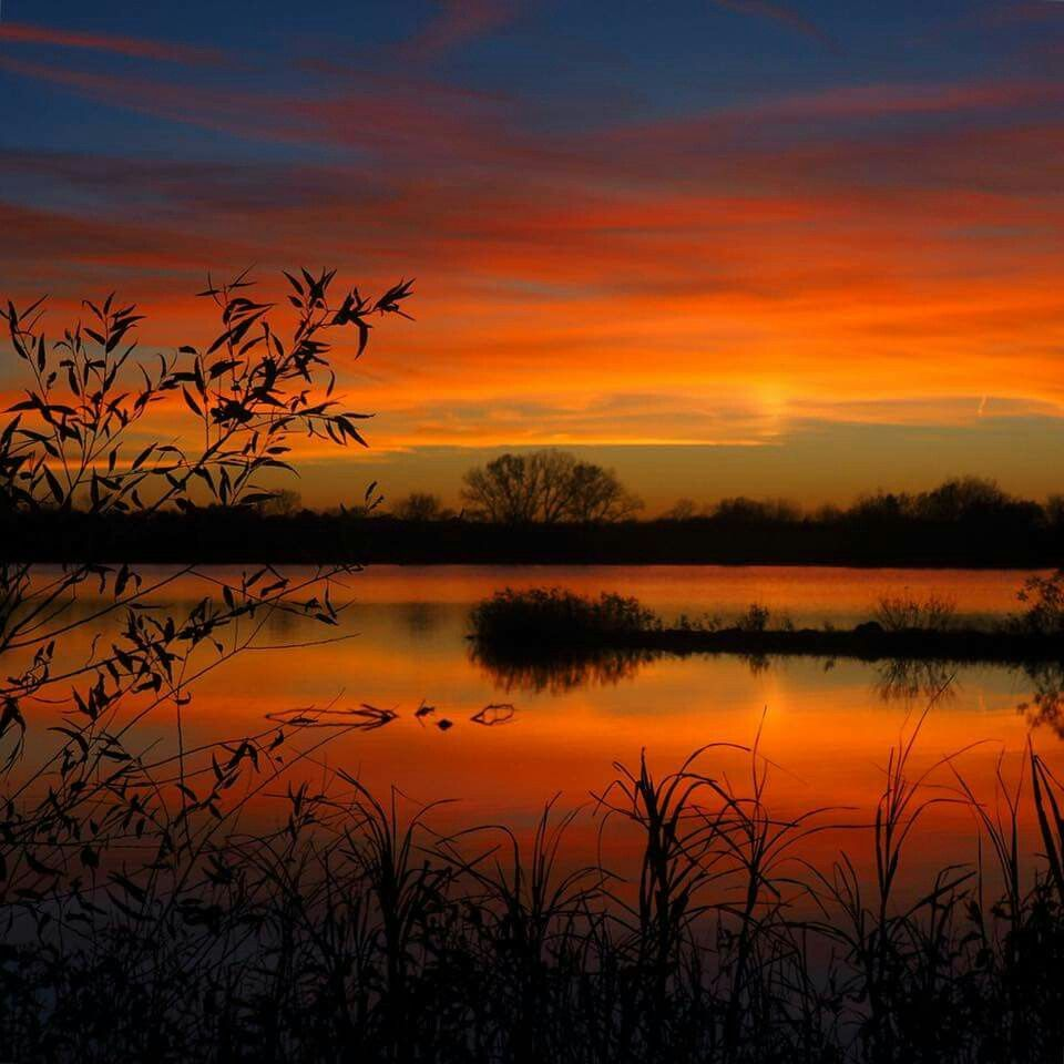No Words Can Describe This Gorgeous Sunset Beautiful Nature Nature Photography Nature Pictures