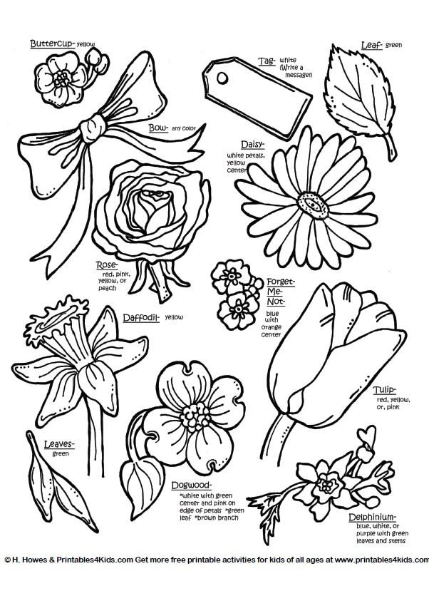 Botanical flowers with names Printables for Kids free