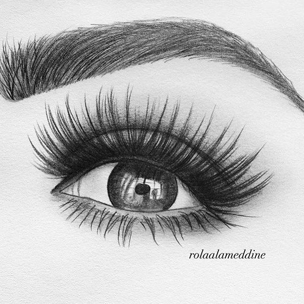 Still Obsessed Thank You Rolaalameddine For Sketching My By
