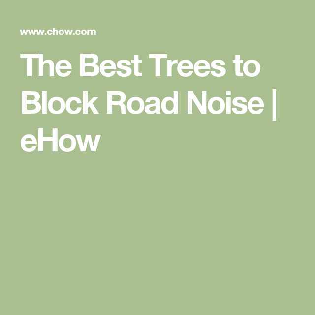 The Best Trees to Block Road Noise | Community garden