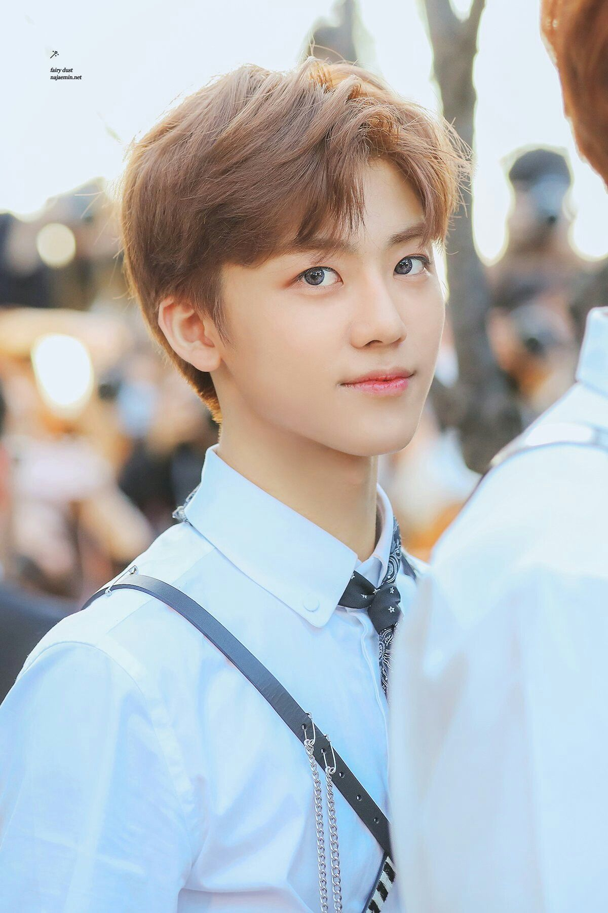 #Jaemin #NCT Cre: Fairy dust | NCT | NCT, Nct 127 e Nct dream