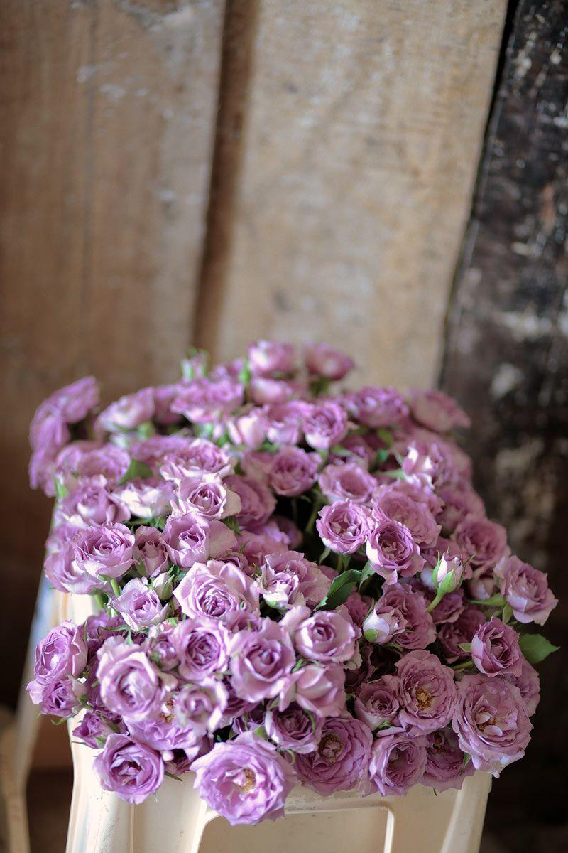 El vestido de novia de Flor Fuertes I © Días de Vino y Rosas   El ...
