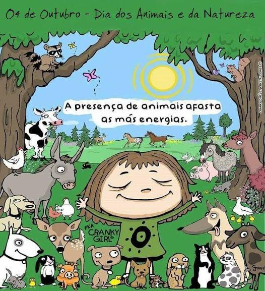 Pin De Cristina Cristina Em Carisma Franciscano Pelos Animais E