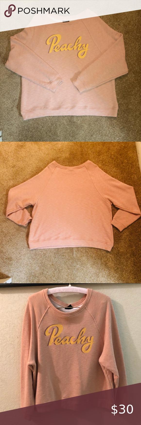 Blank Paige Peachy Peach Crewneck Sweatshirt Sweatshirts Crew Neck Sweatshirt Pink Crewneck Sweatshirt [ 1740 x 580 Pixel ]