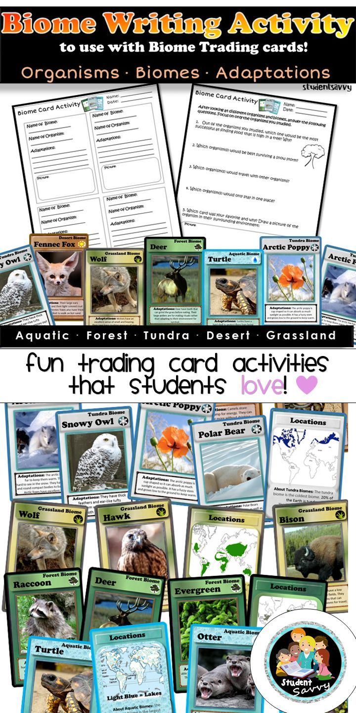 Biome Writing Activity! Common Core Aligned Writing