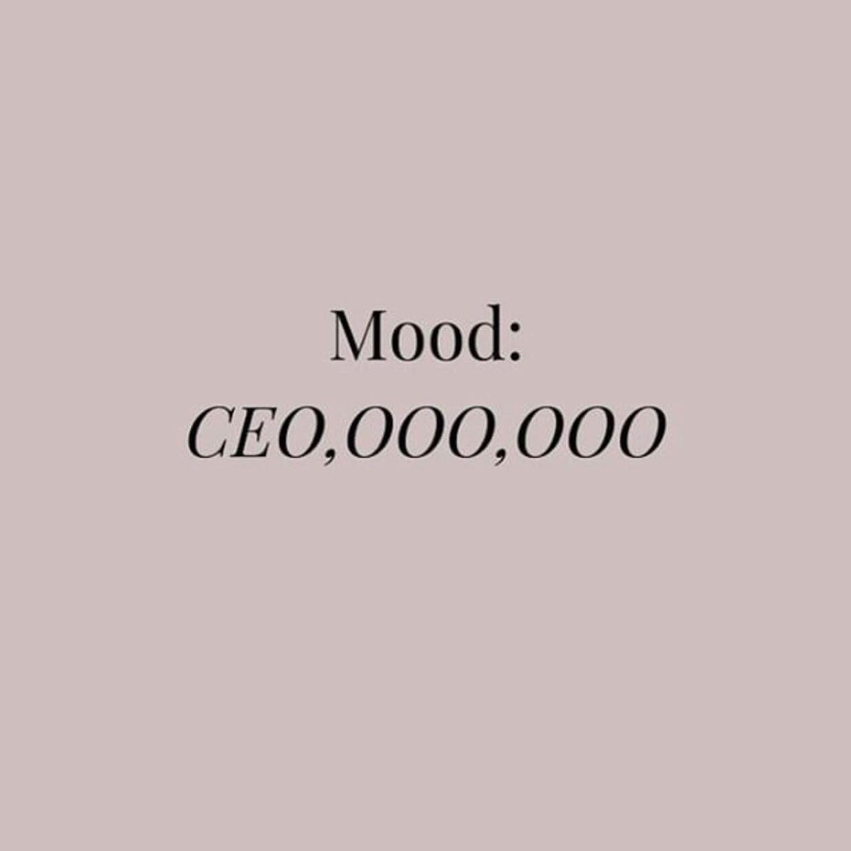 MOOD — the cattwalk