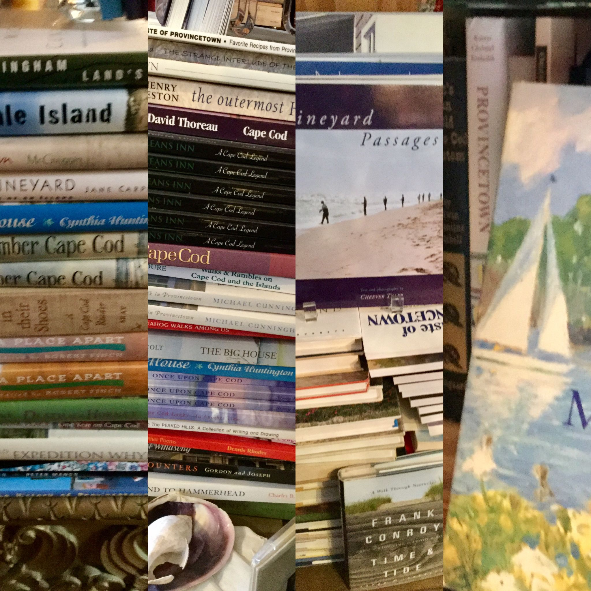 Visit Cape Cod from your armchair this winter, our bookshop has fuel for beach dreaming  Available online from our website or visit our shop in Connecticut.  #capecod #provincetown #truro ma. #beachreading