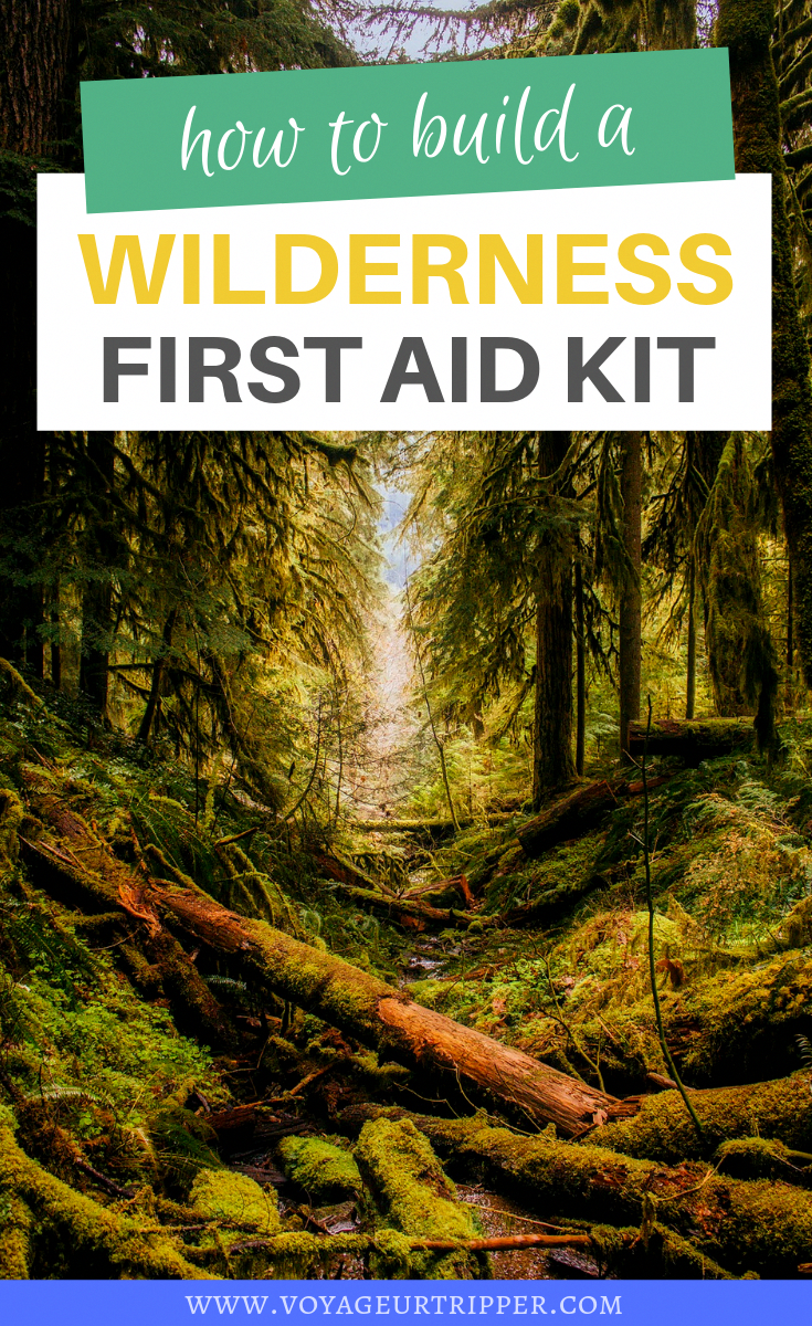 How to build your own Wilderness First Aid Kit #aid #Build #Kit #Wilderness