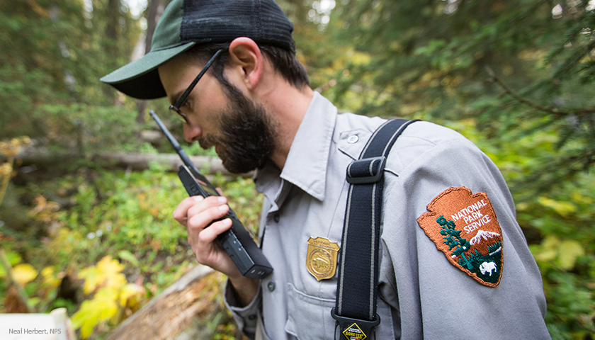 We Explore The Range Of Careers Available Networking And Perfecting Just The Right Resume Park Ranger Alumni Ranger