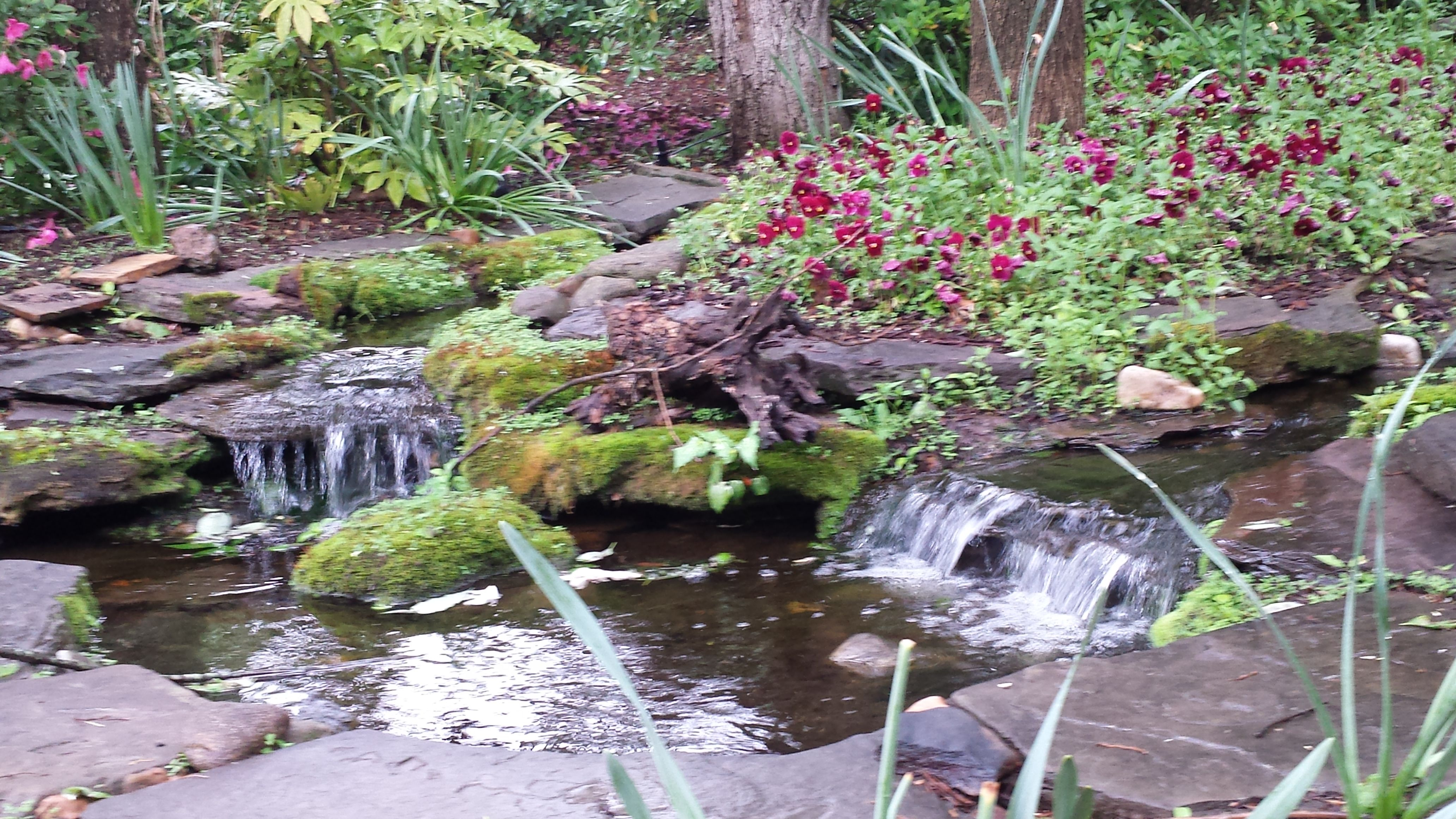 Stream And Pond Construction By All Natural Streams Landscaping Con Imagenes
