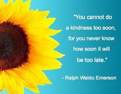 sunflower quote | Sunflower quotes, Flower quotes ...