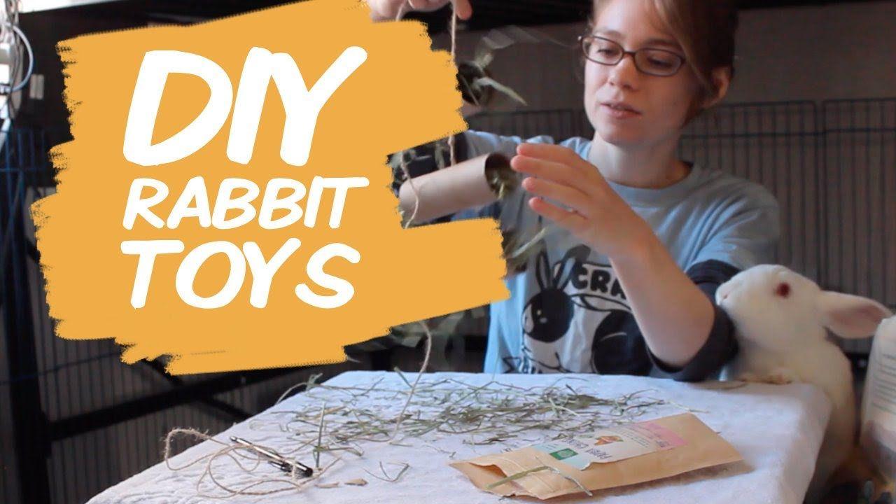 Easy diy rabbit chew toys in 2020 diy bunny toys rabbit