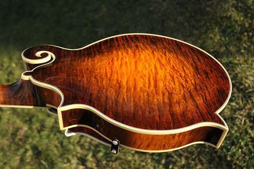 Fs Wiens F5 Mandolin Kimble Mandola Breedlove Dm Deluxe With Calton