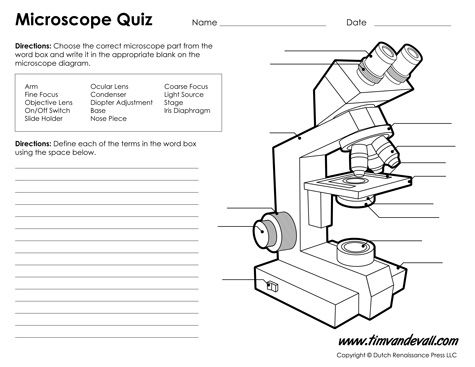 Microscope Diagram Labeled Unlabeled And Blank Microscope