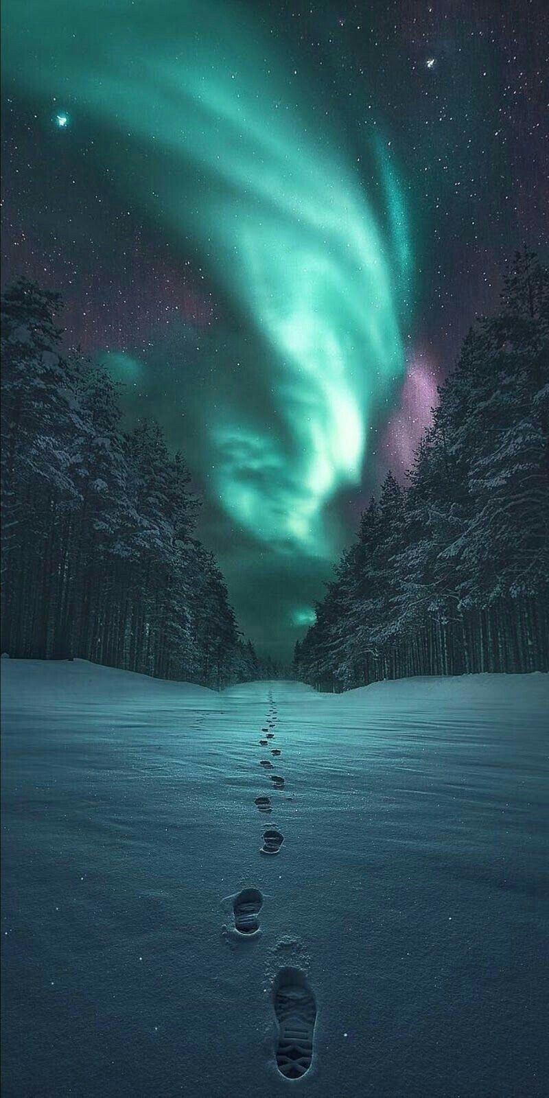 Landscape, Night Sky, Aurora, Green iPhone 5 wallpapers
