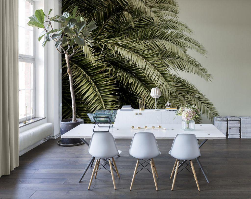 Tapete Palmen image result for tapete palmen living room living