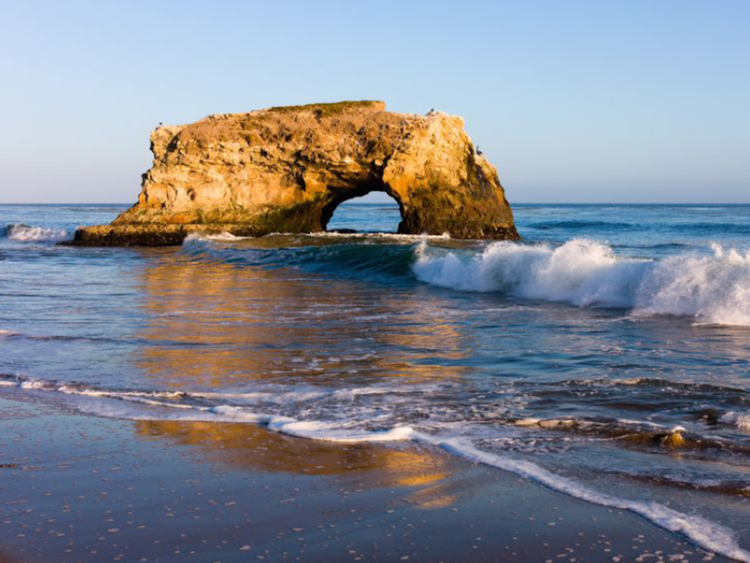 Do It For The Kids Santa Cruz Beach Natural Bridges State Beach Santa Cruz