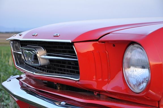 Ford Mustang Coupe 1966 Ford Mustang Neuwagen Ford Mustang Coupe