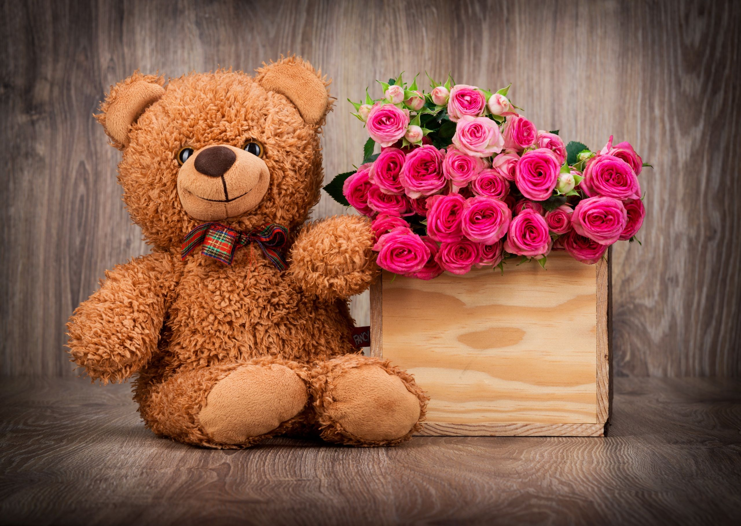 cute teddy bear wallpaper with pink roses in box | hd wallpapers for
