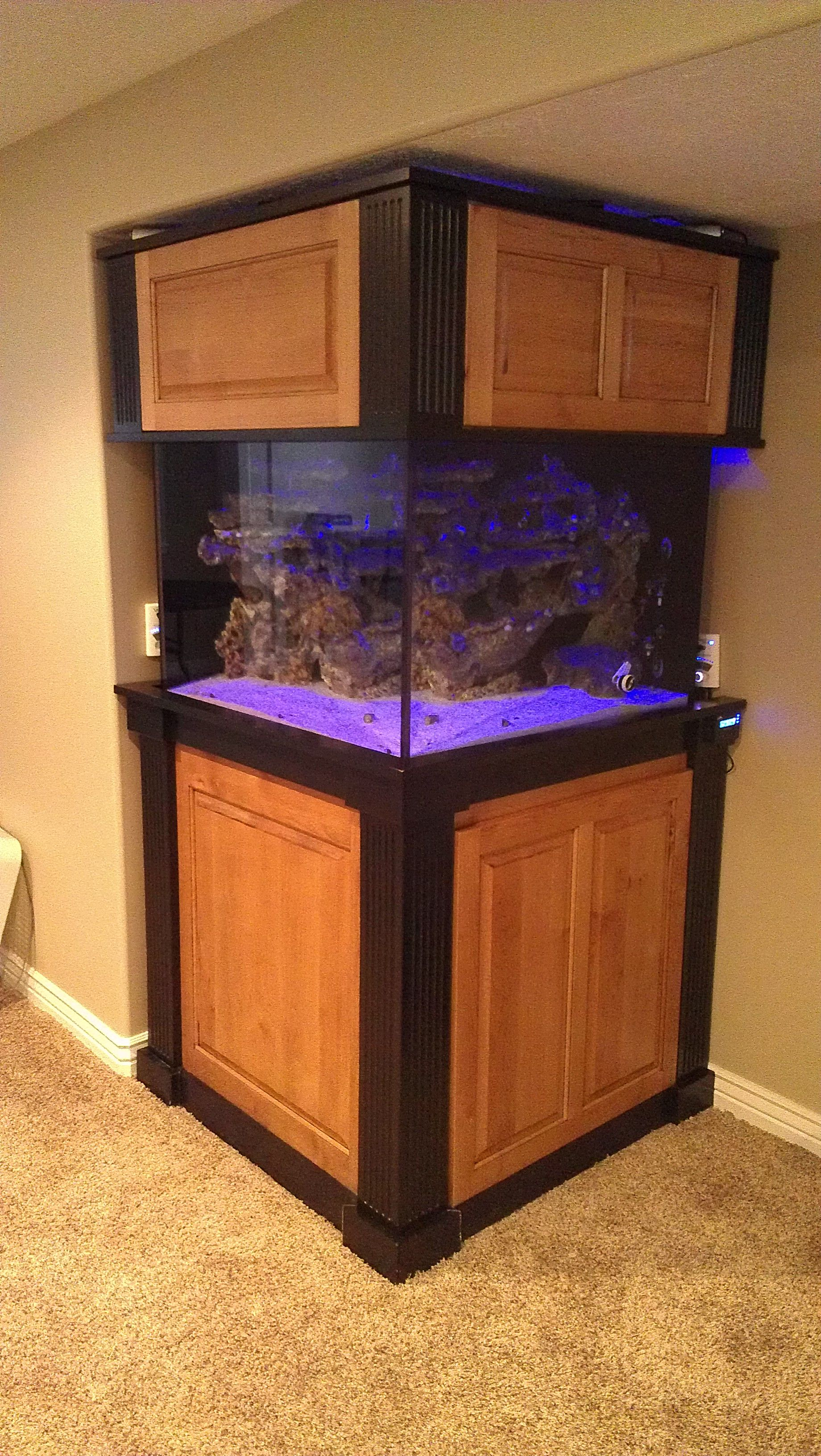 Custom Aquarium Stands Large Cube 2 Tone Clear Alder Stand And Canopy
