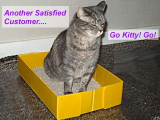 go kitty go portable travel catkitty litter box is a musthave