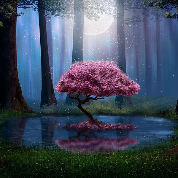Moonlight Blossom Canvas Set In 2021 Cherry Blossom Art Diy Painting Pink Trees