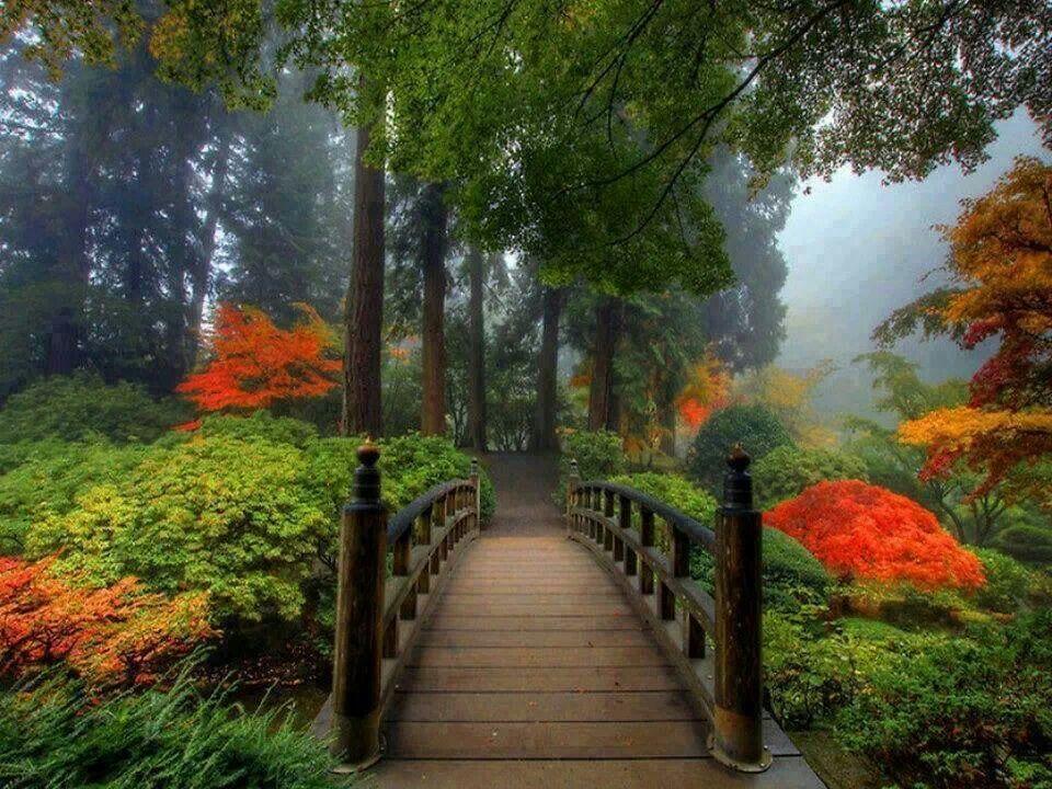 Portland Japanese Garden Japanese Garden Pinterest