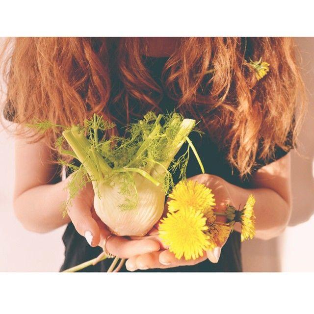 Montauk Juice Factory @montaukjuicefactory Instagram photos | Fennel + dandelion = antioxidant/detox central