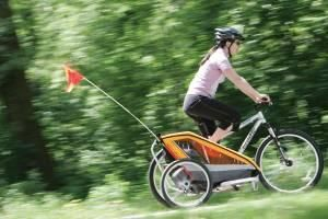 Chariot Sidecar Chariot Sidecarrier Bicycle Sidecar 200