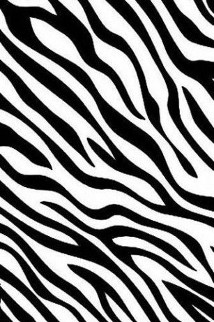 Zebra Print Zebra Print Background Animal Print Wallpaper Zebra Wallpaper