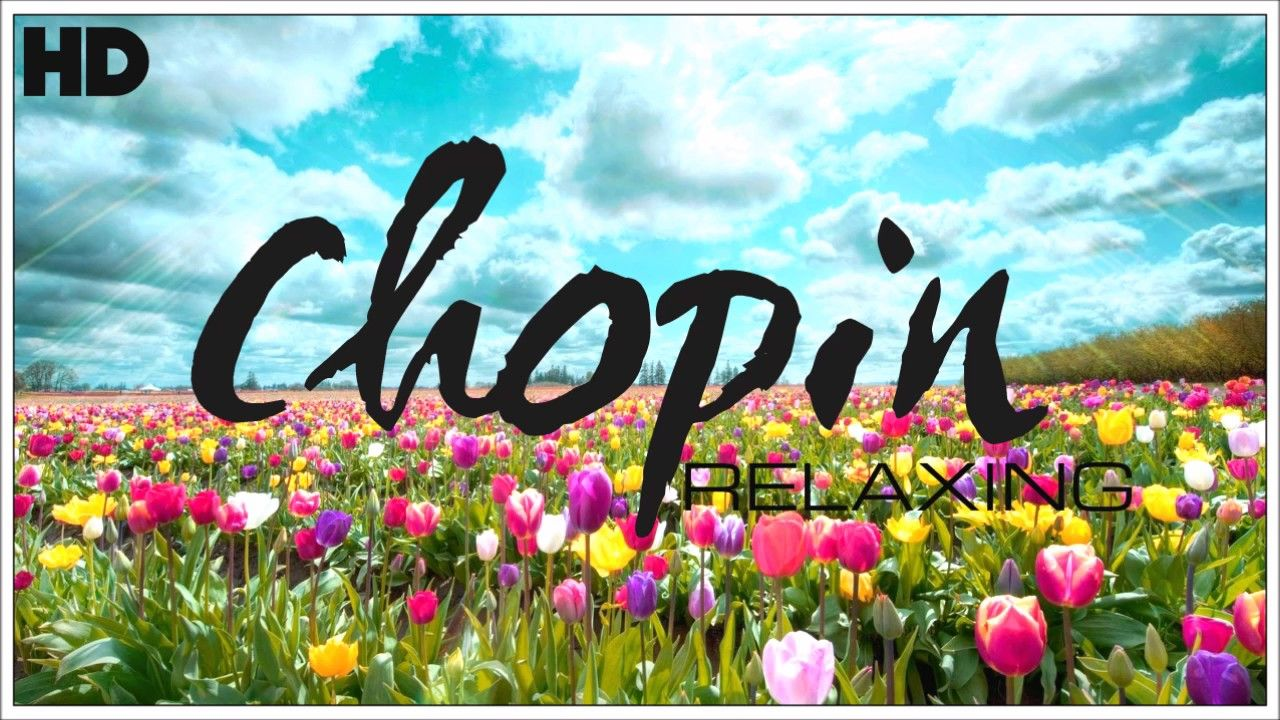 The Best Relaxing Classical Music Ever By Chopin Relaxation