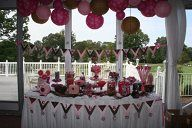 Pink and Brown wedding candy buffet