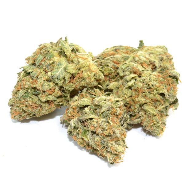 Special K is ahybridcross betweensativaWestern Winds andindicaSlyder. The plant is tall with substantial girth,despite its lanky indica influence, with elongated buds.The effects are long-lasting with a quick onset, beginning with aphysical buzz andevolving into a heady lift that borders on psychedelic.
