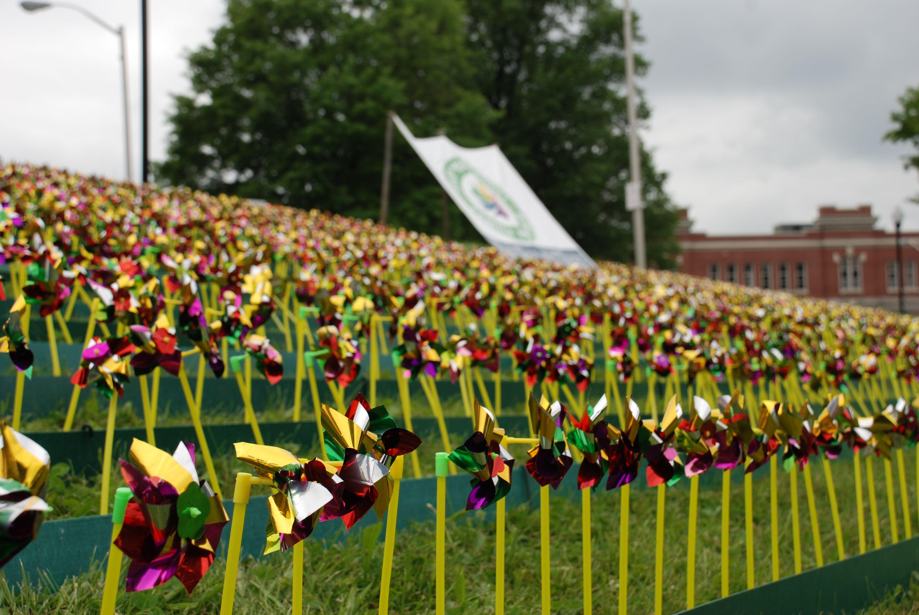 17 Best 1000 images about Pinwheels on Pinterest Gardens Pinwheels