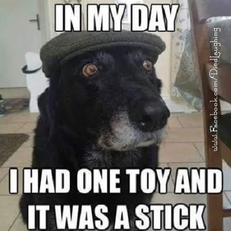 In my day I had one toy and it was a stick... lol