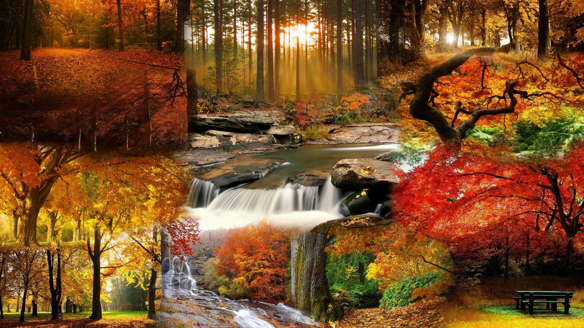 Landscape Fall Wallpaper Picture Opw Herbstbilder Herbst Bilder Bilder