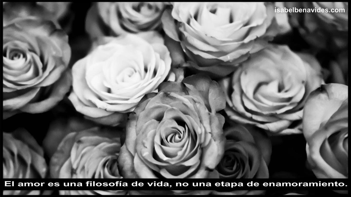 El amor es una filosofía de vida, no una etapa de enamoramiento. #Frases Http://isabelbenavides.com/