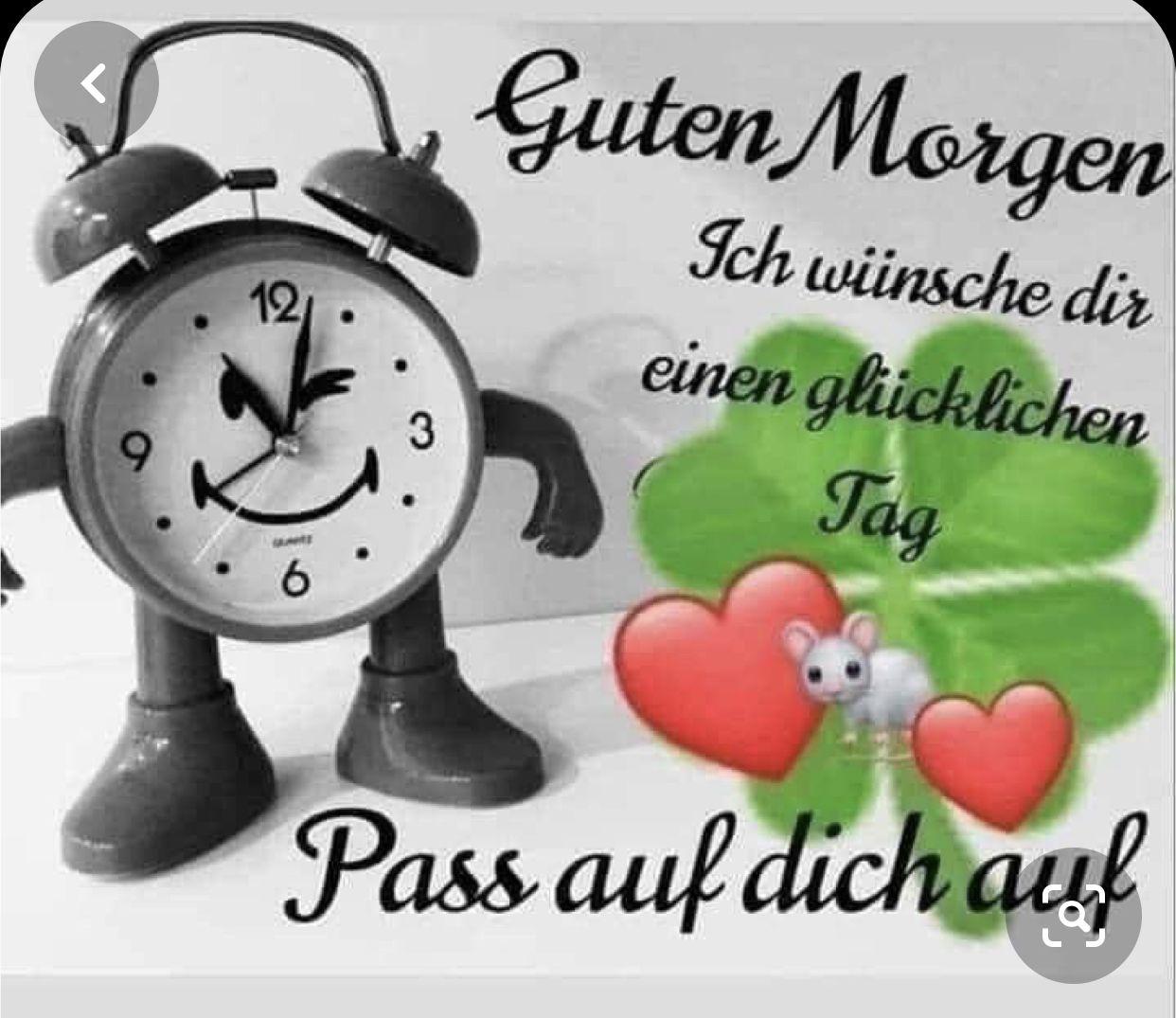 Pin Von Sabine Gottschling Auf Spruche In 2020 Liebe Guten Morgen Grusse Guten Morgen Lustig Guten Morgen