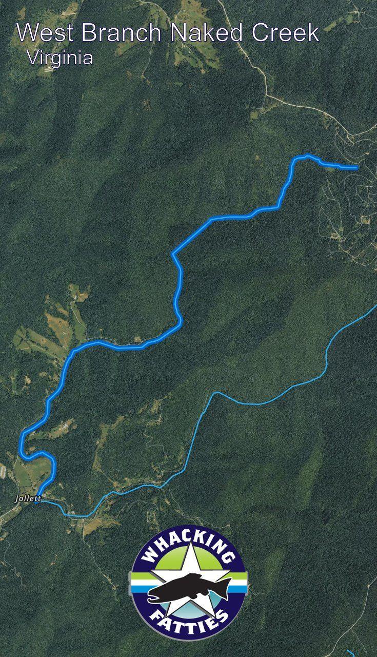 East Branch Naked Creek, Virginia Fishing Report