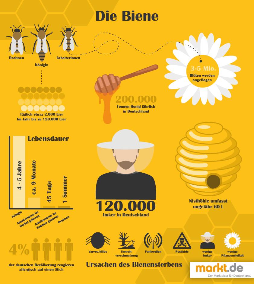 die biene fakten rund um bienen und das bienensterben findest du im ratgeber bee. Black Bedroom Furniture Sets. Home Design Ideas