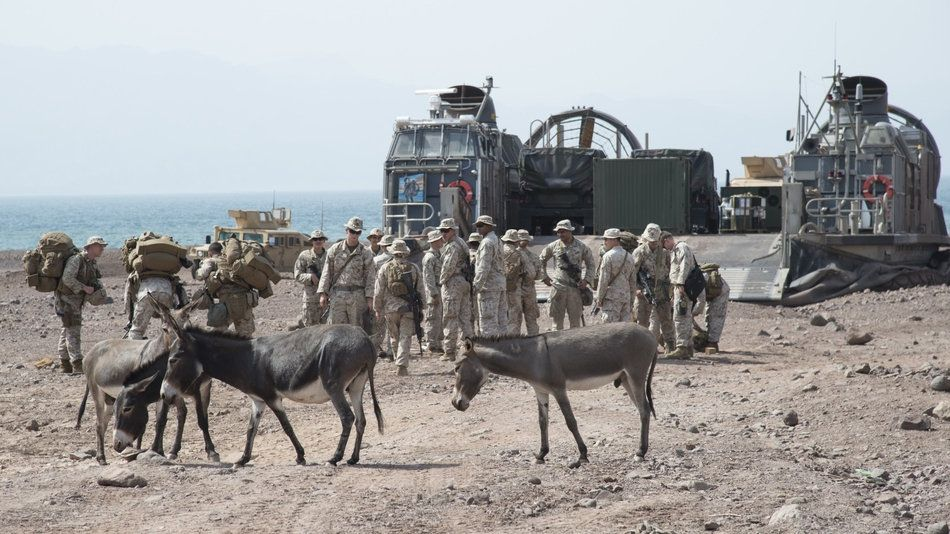 U.S. Marines from the 15th Marine Expeditionary Unit strategically position themselves Sept. 5, 2017, during an Alligator Dagger beach landing exercise in Djibouti. (Tech. Sgt. Joe Harwood/Air National Guard)