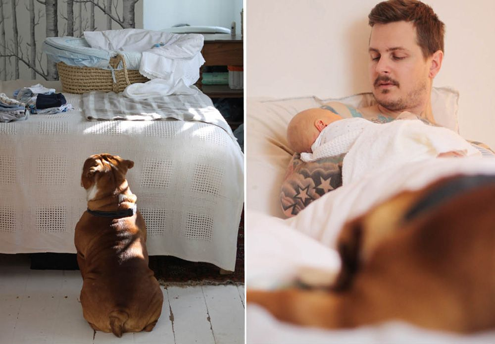 tattoos and baby, man with baby, tattood man with baby, father and son, newborn baby, home sweet home, english bulldog