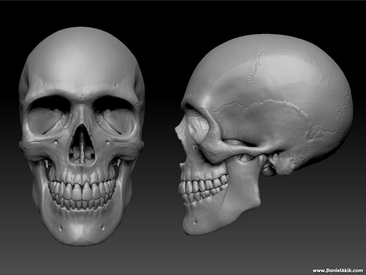 Httptroglodyte3d 3d Pinterest Zbrush 3d Artist And